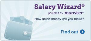 Salary Widget