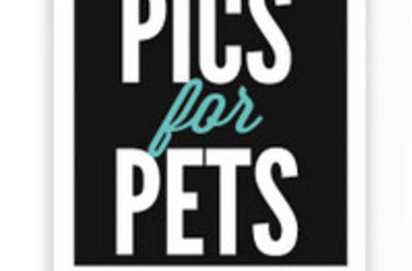 Pics for Pets Scholarship from DoSomething