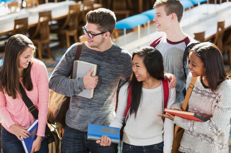 college essay on diversity