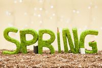 Spring Into Your Scholarship Search