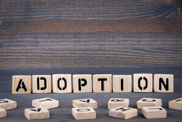 Does Adoption Affect an Orphan's Eligibility for Financial Aid?