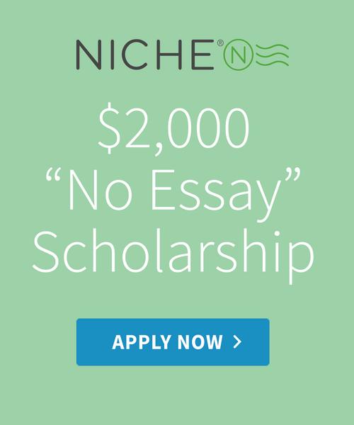 Niche no essay 1300x1300  2x